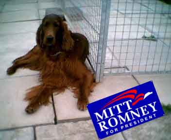 vote-for-mitt.jpg