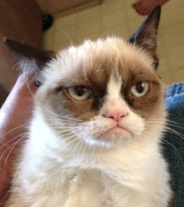 Grumpy Cat cannot wait until Caiden Cowger is 18.