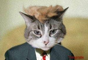 Short-fingered vulgarian Donald Trump (thanks Spy Magazine)