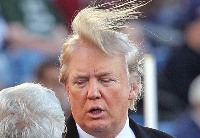 trumps hair